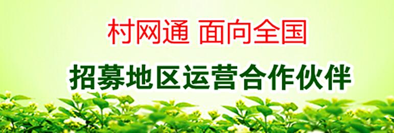 全国村网通工程:引领中国